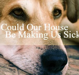 could-our-house-be-making-us-sick-francine-brown-dot-com