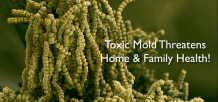 Mold have you worried? Sick.. unexplained symptoms?