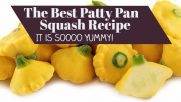 The best Patty Pan Squash Recipe