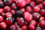 Cranberry Juice Detox Recipe