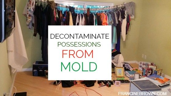 decontaminate-from-mold-francine-brown-dot-com