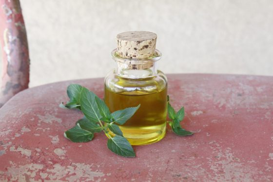 homemade-peppermint-infused-oil
