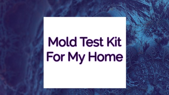 Mold Test Kit for My Home