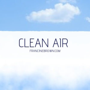 Air Purifiers/Air Reactors
